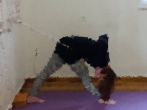 parsvottanasana with a rope and block for foot